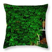 Ivy Window Throw Pillow