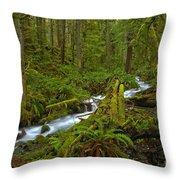 Lifeblood Of The Rainforest Throw Pillow
