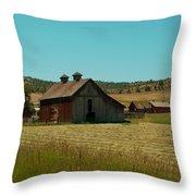 J D Barn Throw Pillow