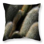 J-roll Throw Pillow