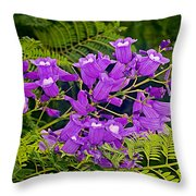 Jacarunda On Corrientes Avenue In Buenos Aires-argentina  Throw Pillow