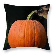 Jack And Molly Throw Pillow