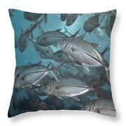 Jack Fishes At The U.s.a.t. Liberty Wreck Throw Pillow