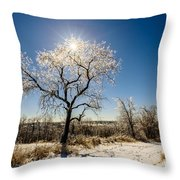Jack Frost's Last Stand Throw Pillow