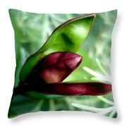Jack In The Pulpit 4 Throw Pillow