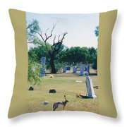 Jack Rabbit In Cementery Throw Pillow