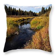 Jackfish Creek In Autumn Throw Pillow