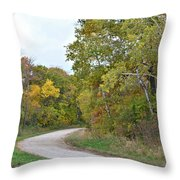 Jackson Avenue Throw Pillow