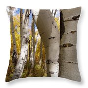 Jackson Hole Wyoming Throw Pillow