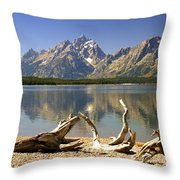 Jackson Lake 3 Throw Pillow