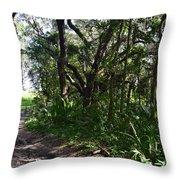 Jackson's Gap Trail Throw Pillow