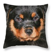 Jacob Throw Pillow