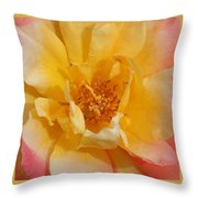 Jacob's Bands Of Color Throw Pillow