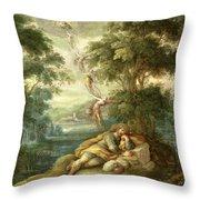 Jacobs Dream Throw Pillow