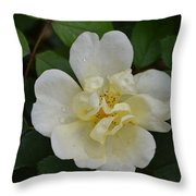 Jade And Ivory Throw Pillow