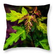 Jagged Leaves Throw Pillow