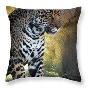 Jaguar At Rest Throw Pillow