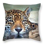 Jaguar Cooldown Throw Pillow