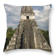 Jaguar Temple Throw Pillow