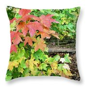 Jamaica Me Fall Throw Pillow