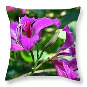 Jamaican Bloom Photograph   Throw Pillow