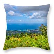 Jamaican Vista Throw Pillow