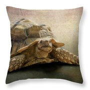 Jamal The Tortoise Throw Pillow