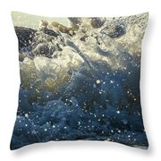 Jamboree Throw Pillow