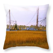 James Island Throw Pillow