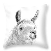 James Throw Pillow