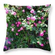 Jane's Rose Bush Throw Pillow