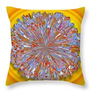 Janet -- Floral Disk Throw Pillow