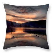 January 16 2010 Throw Pillow