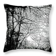 January Beauty 2 Black And White  Throw Pillow