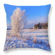 January Day Throw Pillow