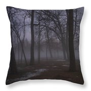 January Fog 2 Throw Pillow