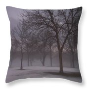 January Fog 4 Throw Pillow