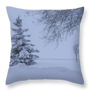 January In Ontario Throw Pillow