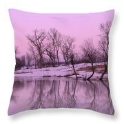 January Thaw  Throw Pillow