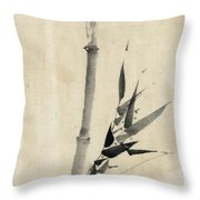 Japan: Bamboo, C1830-1850 Throw Pillow