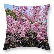 Japan Blossoms Throw Pillow