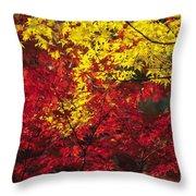 Japan Vibrant Leaves Throw Pillow