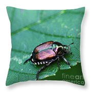 Japanese Beetle Throw Pillow