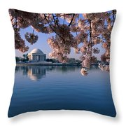 Japanese Cherry Blossoms Prunus Throw Pillow