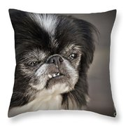 Japanese Chin Doggie Portrait Throw Pillow