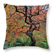 Japanese Garden Lace Leaf Maple Tree In Fall Throw Pillow