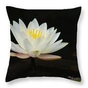 Japanese Garden Lily  Throw Pillow by Ward Photography