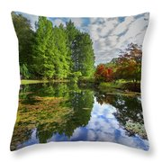 Japanese Garden Pond I Throw Pillow