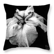 Japanese Iris In Black And White Throw Pillow