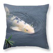 Japanese Koi Fish Throw Pillow